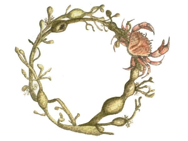 Seaweed wreath_adjusted
